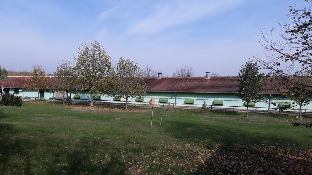 Živinarska farma 04