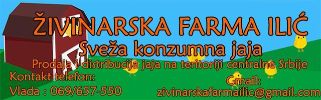Živinarska farma Ilić