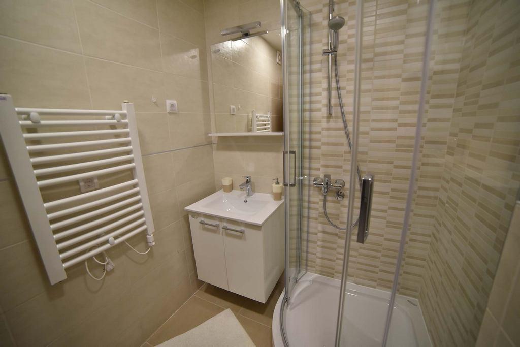 Apartmani Zlatibor-Apartman Violeta 4